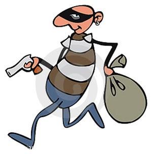 دزد کودنی که ناخواسته خودش را به فنا داد