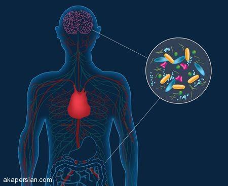 پارکینسون روده چیست و آیا خطرناک است؟