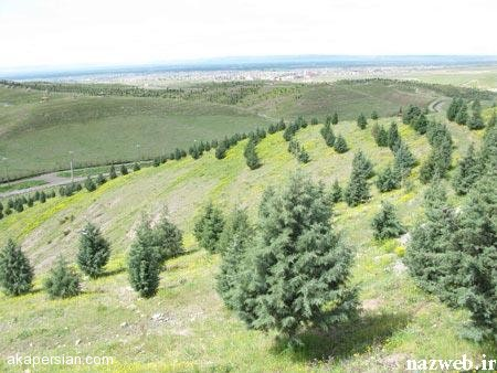 آشنایی با زیباترین پارک های جنگلی ایران + تصاویر