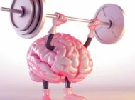 ورزش های مورد علاقه مغز انسان