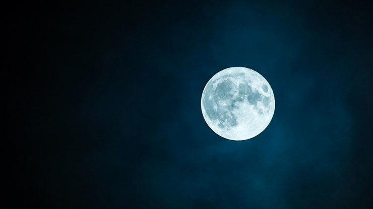 پسری که هر شب برهنه زیر نور ماه شبیه مار می خزد